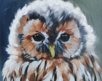 Owl print - tawny owl - owl painting - bird painting - canvas print - bird painting