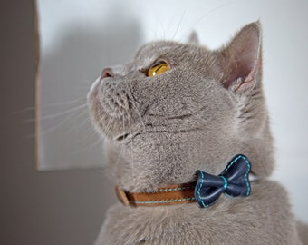 Cat Bow Collar