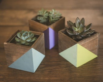 Painted Geometric Wood Planter Succulent Kit (MORE COLORS INSIDE); Natural Wood; Small Planter; Office Planter; Desk Accessory; Dorm