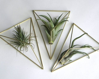 wall hanger air plant | himmeli diamond mobile | geometric mobile | gold holder planter | modern art sculpture | geometric wall terrarium