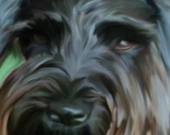 Digital Pet Paintings on Canvas