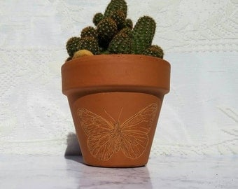 Hand-Engraved 4in Unglazed Terra Cotta Planter Butterfly Design