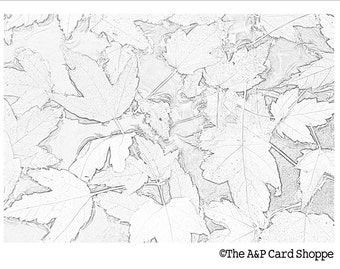 Coloring Card 7 // Leaves on the Pond