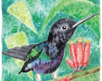 Arturito, the dancing green hummingbird
