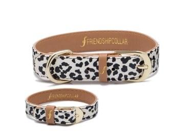 The Wild One - Dog FriendshipCollar and matching friendship bracelet