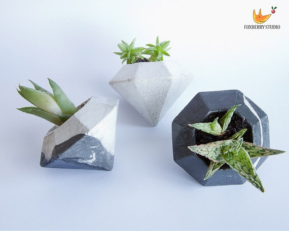 Diamond geometric air plant holder succulent by for Geometric air plant holder