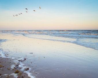Fine Art Photography | Sky, beach, pelicans, ocean, waves, Serene, tranquility, twilight, horizon, Decor, Nature Photograph, Dreamy Image