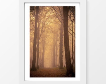 "Misty forest / Trees path leaves fog autumn printable art home decor downloadable art to print yourself / A3 and 11"" x 17"""