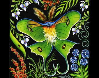 Luna Moth (print)