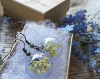 Elder flower earrings, elder, dried flower bijoux