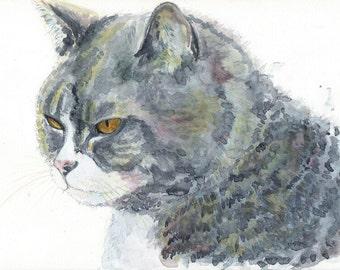Cat. Print.