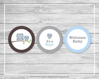 Owl Baby Shower Cupcake Toppers - Printable Baby Shower Cupcake Toppers - Blue Owl Baby Shower - Owl Cupcake Toppers - Owl Shower - SP135