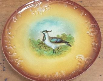 Franz Anton Mehlem Game Bird Cabinet Wall Plate ~ 1836-1920 ~ Porcelain Dish