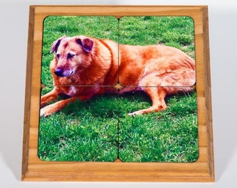 Coasters, Pet, Memorial, Holder, captured moments, furbaby, picture gift, house warming, love, all occasion gift