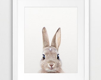 Rabbit Print, Woodland Nursery Decor, Rabbit Photo, Bunny Rabbit, Nursery Prints, Modern Animal Art, Woodland Animals, Nursery Printable Art