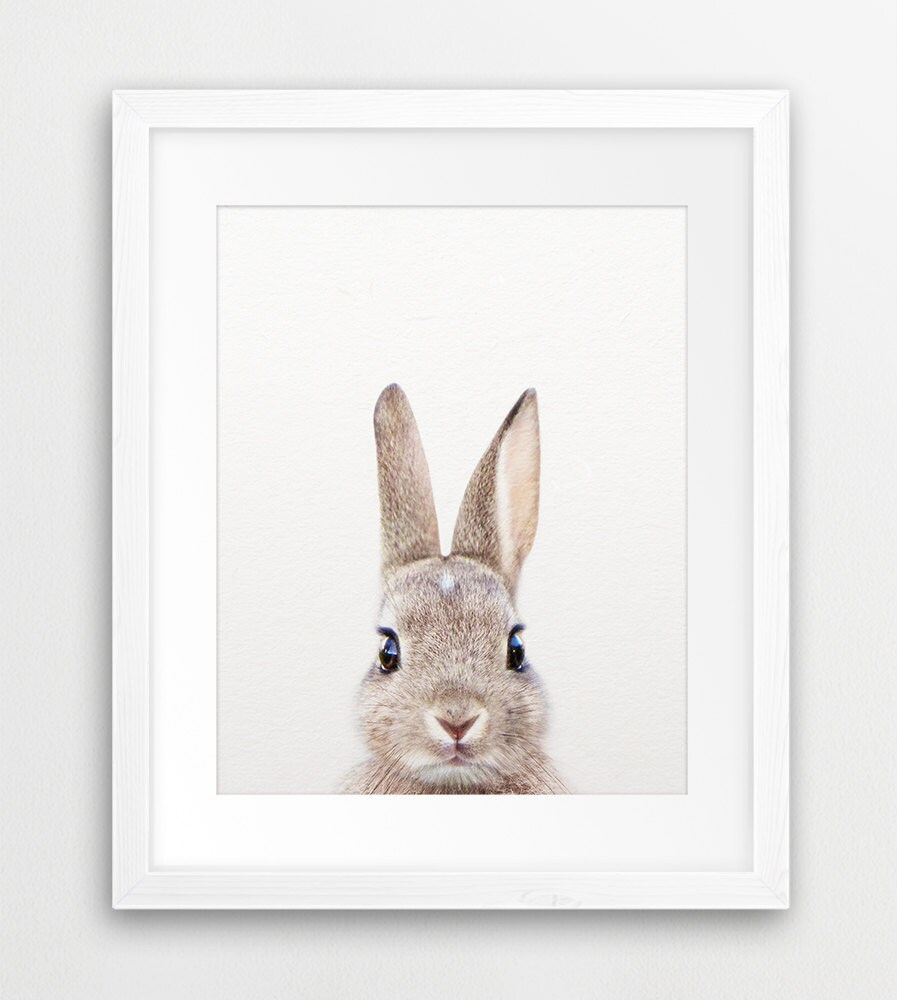 Rabbit print woodland nursery decor rabbit photo bunny for Rabbit decorations home