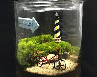 Large Beach Terrarium-Bike Terrarium-Moss Terrarium-Large Terrarium-TerraSphere