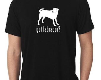 Got Labrador T-Shirt lab T77