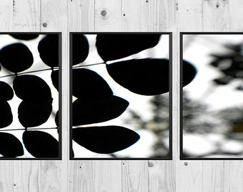 Leaf silhouette triptych wall art, digital print, nature photography, garden art, three piece wall art