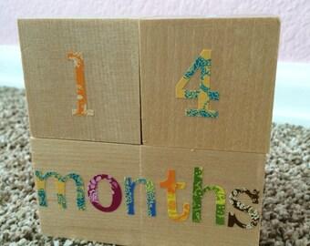 Baby milestone blocks photo prop -- newborn, infant, toddler, maternity, nursery decor