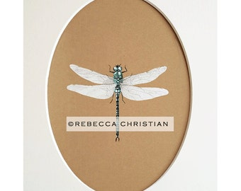 Dragonfly Gifts, Dragonfly wall art, dragonfly art