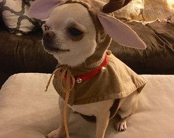 Reindeer Dog Outfit