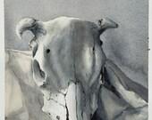 Original COW SKULL WATERCOLOR Art Print