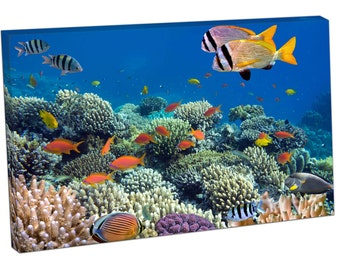 FO0325 Print On Canvas Underwater coral reef TROPICAL FISH Wildlife ART