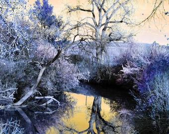 Reflection downloadable digital art