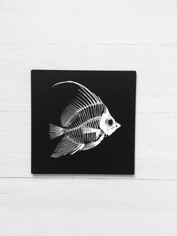 Fish Anatomy 1 Skeletal Anatomy Fish Original Etching By
