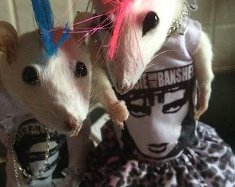Im in love punks