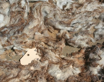 Pedigree Shetland shearling ruwe wol/ raw wool 0.5kg/1.1lb