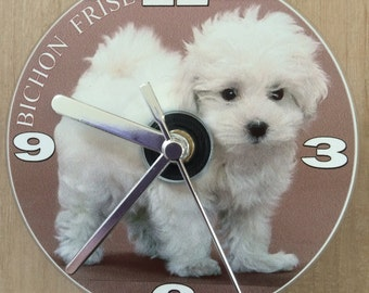 Bichon Frise, Small Dog Breed, CD Clock (Can be personalised)