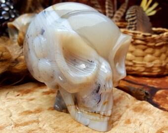 Rare High Vibration Shantilite Skull