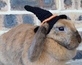 Witches hat for bunnies, pet rabbit halloween hat, pet bunny clothing and accessories, pet rabbit Halloween costume, pet witches hat