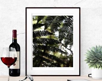 Fern print, Fern wall art, Woodland printable art, Forest art, woodland bedroom art, Nature printable art, Nature photography art