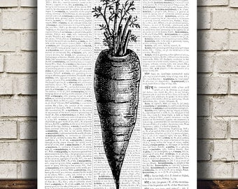 Kitchen art Carrot poster Food print Vegetable print RTA518