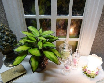 "Plant Green Miniature ""Dieffenbachia"" with its Ceramic Pot - 1/12 scale - accessory of doll's House decor"