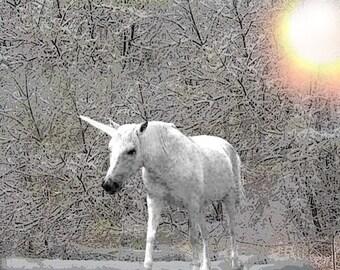 Unicorn in Winter Forest