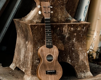 Ukulele handmade in Suffolk, England from locally sourced walnut.