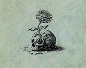Skull with Flower Growing from it - Antique Style Clear Stamp