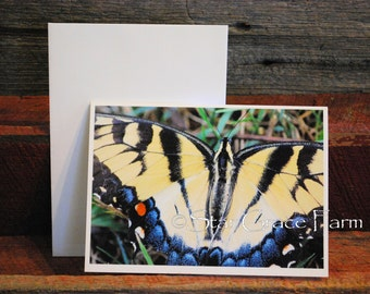 Butterfly Card // Swallowtail Photo Card // Butterfly Note Card // Nature Card // 5x7 Card // Greeting Card // Birthday // Friend