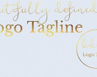 Pre-made Logo Design *2