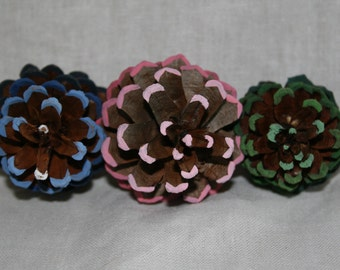 Painted pine cone kit