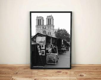Notre-Dame in Paris, France - poster