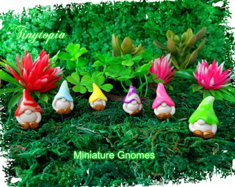 Handmade set of 3 miniature gnomes with glow in the dark swirl hats! You choose your colours! Free Postage