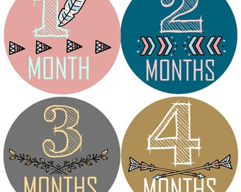 Baby Month Stickers Month Stickers Bodysuit Milestone Stickers Monthly Baby Stickers Photo Baby Sticker Month by Month Sticker Shower Gift