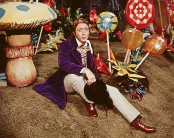 Willy Wonka and the Chocolate Factory movie poster 11x17