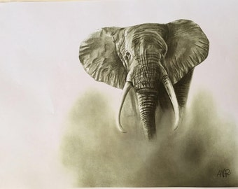 Elephant drawing (print)