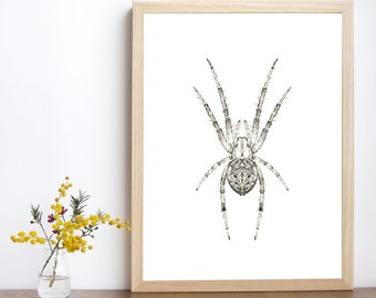 Spider print, spider decor, spider poster, spider printable, spider art, insect print, spider illustration,insect wall art, home decor